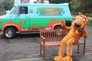 Scooby checks out the new friendship chair presented to Egmont Village School - Photo by Sharyn Smart